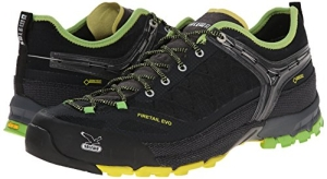 Salewa MS Firetail Evo GTX Test